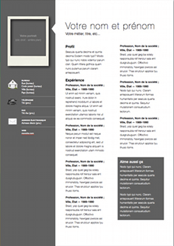professional modern cv template for pages