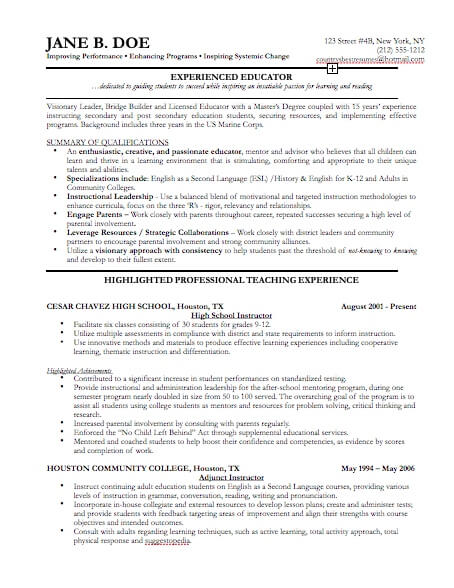 proffesional resume format resume cv cover letter - Professional It Resume